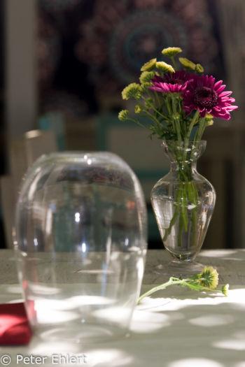 Vase und Glas  San Carles Balearische Inseln - Ibiza Spanien by Peter Ehlert in Ibiza - Insel des Lichts