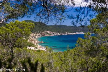 Blick auf Bucht  Platja es Figueral Balearische Inseln - Ibiza Spanien by Peter Ehlert in Ibiza - Insel des Lichts