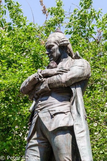 Statue mit Taube  Paris Île-de-France Frankreich by Lara Ehlert in Paris, quer durch die Stadt