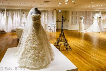Hochzeitsmode  Paris Île-de-France Frankreich by Peter Ehlert in Paris, quer durch die Stadt