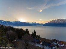 Genfer See mit Bergen am morgen  Chexbres Vaud Schweiz by Peter Ehlert in Wochenende am Genfer See
