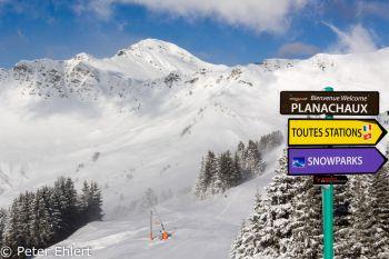 Aufgewirbelter Neuschnee  Champéry Valais Schweiz by Peter Ehlert in Skigebiet Portes du Soleil