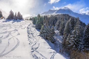 Aufgewirbelter Neuschnee, Spuren auf Piste  Abondance Rhône-Alpes Frankreich by Peter Ehlert in Skigebiet Portes du Soleil
