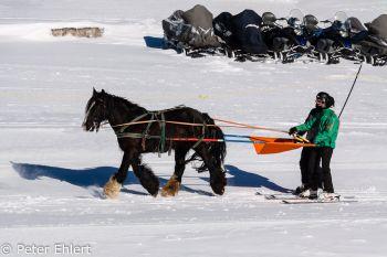 Pferde Skilift  Morzine Rhône-Alpes Frankreich by Peter Ehlert in Skigebiet Portes du Soleil