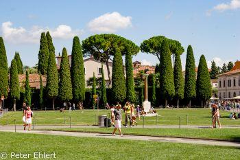 Park mit Lupa capitolina  Pisa Toscana Italien by Peter Ehlert in Abstecher nach Pisa