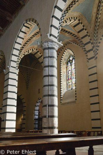 Seitenschiff mit Fenster  Pisa Toscana Italien by Peter Ehlert in Abstecher nach Pisa