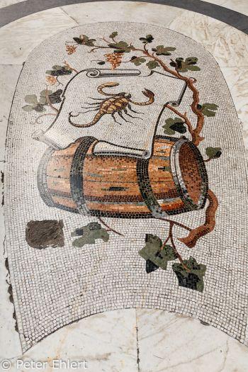Skorpion Mosaik  Neapel Campania Italien by Peter Ehlert in Pompeii und Neapel