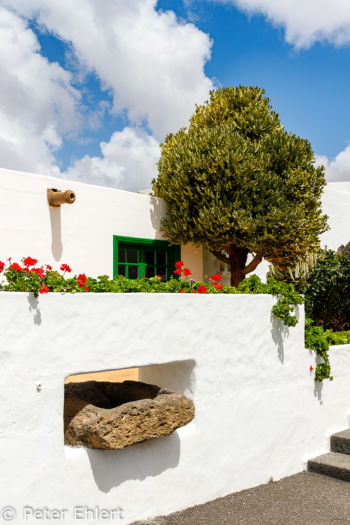 Kassenhaus  Teguise Canarias Spanien by Peter Ehlert in LanzaroteFundacion