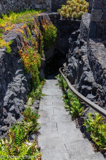 Treppe zum unteren Wohnbereich  Teguise Canarias Spanien by Peter Ehlert in LanzaroteFundacion