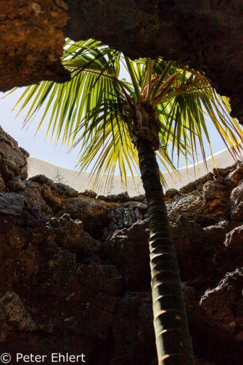 Lichtdurchbruch mit Palme  Teguise Canarias Spanien by Peter Ehlert in LanzaroteFundacion