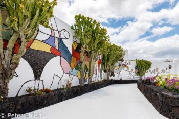Weg vor Mosaikwand  Teguise Canarias Spanien by Peter Ehlert in LanzaroteFundacion