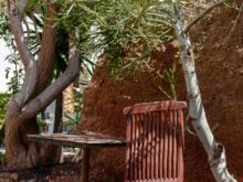 Deckchair unter Baum  Nazaret Canarias Spanien by Peter Ehlert in LanzaroteLagomar