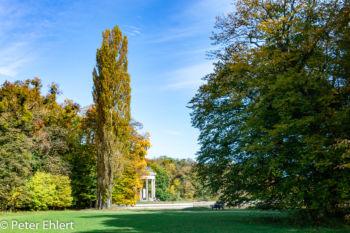 Wiese mit Apollo Tempel  München Bayern Deutschland by Peter Ehlert in MUC-Nyphenburg