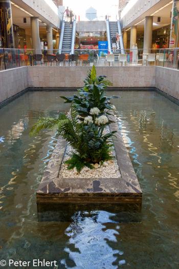 Untergeschoss  Valencia Provinz Valencia Spanien by Lara Ehlert in Valencia_Eixample_Colon