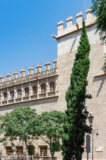 Aussenansicht  Valencia Provinz Valencia Spanien by Lara Ehlert in Valencia_Seidenbörse