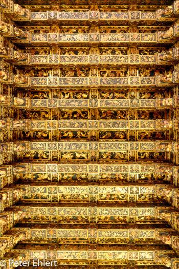 Vergoldete decke im Prunksaal  Valencia Provinz Valencia Spanien by Peter Ehlert in Valencia_Seidenbörse