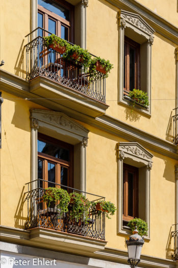 Balkone am Haus  Valencia Provinz Valencia Spanien by Peter Ehlert in Valencia_Stadtrundgang