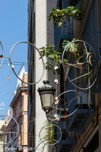 Strassenschmuck  Valencia Provinz Valencia Spanien by Lara Ehlert in Valencia_Stadtrundgang