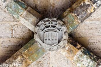 Wappen in Kuppel  Valencia Provinz Valencia Spanien by Peter Ehlert in Valencia_Stadtrundgang