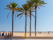 Promenade mit Palmen  Valencia Provinz Valencia Spanien by Peter Ehlert in Valencia_canbanyal_strand