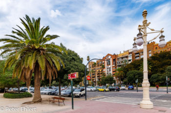 Laterne und Palme  Valencia Provinz Valencia Spanien by Peter Ehlert in Valencia_Turia