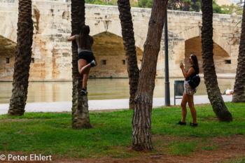 Baumsport  Valencia Provinz Valencia Spanien by Lara Ehlert in Valencia_Turia