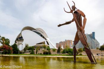 Kunst und Palau Reina Sofia  Valencia Provinz Valencia Spanien by Peter Ehlert in Valencia_Turia