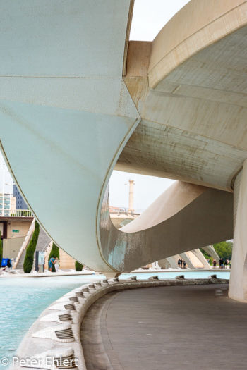 Palau de les Arts Reina Sofía  Valencia Provinz Valencia Spanien by Peter Ehlert in Valencia_Arts i Ciences