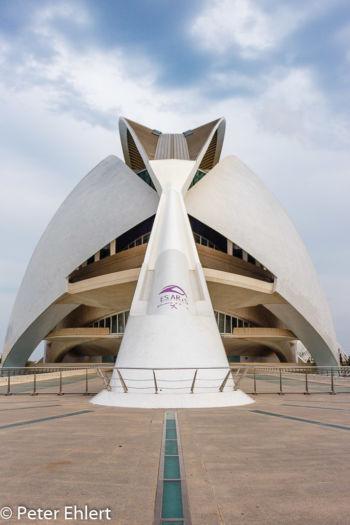 Zugang  Valencia Provinz Valencia Spanien by Lara Ehlert in Valencia_Arts i Ciences