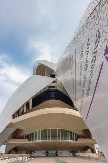Dachstütze mit Gebäude  Valencia Provinz Valencia Spanien by Lara Ehlert in Valencia_Arts i Ciences
