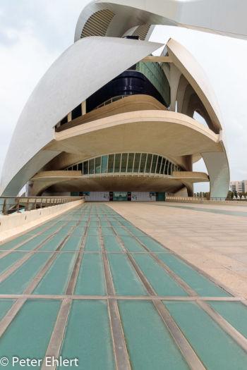 Zugang  Valencia Provinz Valencia Spanien by Peter Ehlert in Valencia_Arts i Ciences