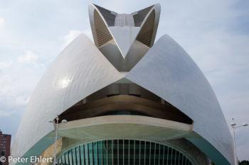 Dachspitze  Valencia Provinz Valencia Spanien by Peter Ehlert in Valencia_Arts i Ciences