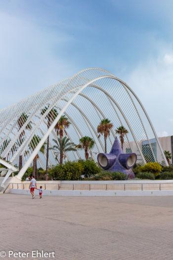 Umbracle  Valencia Provinz Valencia Spanien by Lara Ehlert in Valencia_Arts i Ciences
