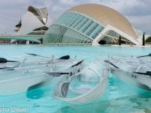 Kanu,  Hemisferic, Palau de les Arts Reina Sofía   Valencia Provinz Valencia Spanien by Peter Ehlert in Valencia_Arts i Ciences