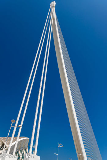 Assut de l'Or Brücke  Valencia Provinz Valencia Spanien by Peter Ehlert in Valencia_Arts i Ciences