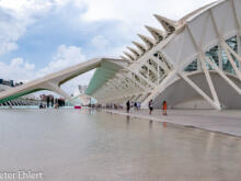 Aussenansicht  Valencia Provinz Valencia Spanien by Peter Ehlert in Valencia_Museu_Ciences
