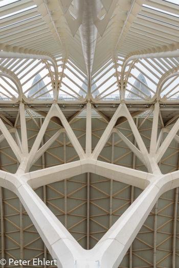 Strebenkonstruktion  Valencia Provinz Valencia Spanien by Peter Ehlert in Valencia_Museu_Ciences