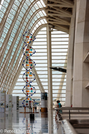 DNA Helix  Valencia Provinz Valencia Spanien by Peter Ehlert in Valencia_Museu_Ciences