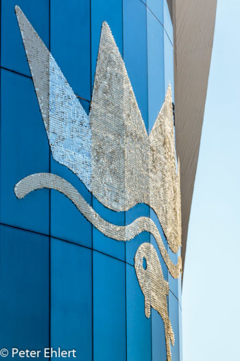 Logo über Eingang  Valencia Provinz Valencia Spanien by Lara Ehlert in Valencia_Oceanografic