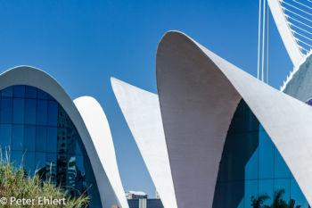 Dachkonstruktion  Valencia Provinz Valencia Spanien by Lara Ehlert in Valencia_Oceanografic